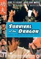 Survival Of The Dragon
