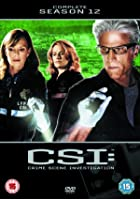 CSI - Crime Scene Investigation - Season 12