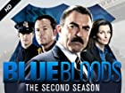 Blue Bloods - Series 2