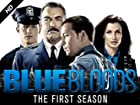 Blue Bloods - Series 1