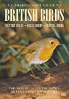 A Comprehensive Guide To British Birds