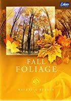 Nature's Beauty - Fall Foliage