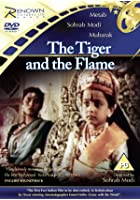 The Tiger and the Flame