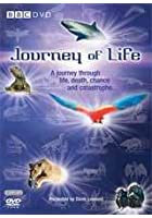 Journey Of Life - BBC