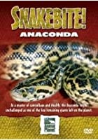 Snake Bite - Anaconda