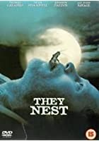 They Nest