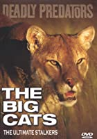 Deadly Predators - The Big Cats