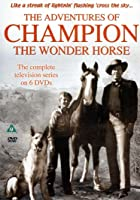 The Complete Adventures Of Champion The Wonder Horse