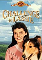 Challenge to Lassie