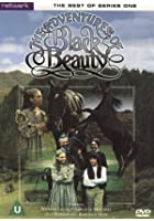 The Adventures Of Black Beauty - The Best Of Series One