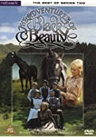 The Adventures Of Black Beauty - The Best Of Series Two