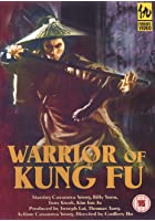 Warrior Of Kung Fu