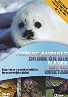 Wildlife - Fishing Animals 1 And 2 / Drink Or Die / Alaska