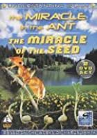 Understanding Islam - The Miracle Of The Ant
