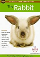 The Rabbit - Perfect Guide To Caring For Your Rabbit