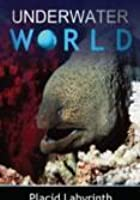 Underwater World - Placid Labyrinth