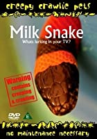 Creepy Crawlie Pets - Milk Snake
