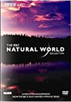 Natural World Collection