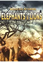 The Whole Story: Elephants And Lions
