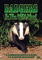 Badgers In The Wood