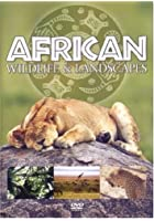 African Wildlife And Landscapes