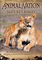 Animal Nation - Nature Babies - Bonding In The Wild