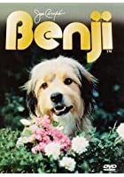 Benji - The Movie