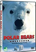 Polar Bears Uncovered