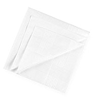 10 Pack Pure Cotton Anti-Bacterial Handkerchiefs