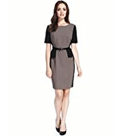 Petite Panelled Peplum Dress with Belt