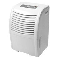 Cheap 30pt Dehumidifier (HD306)