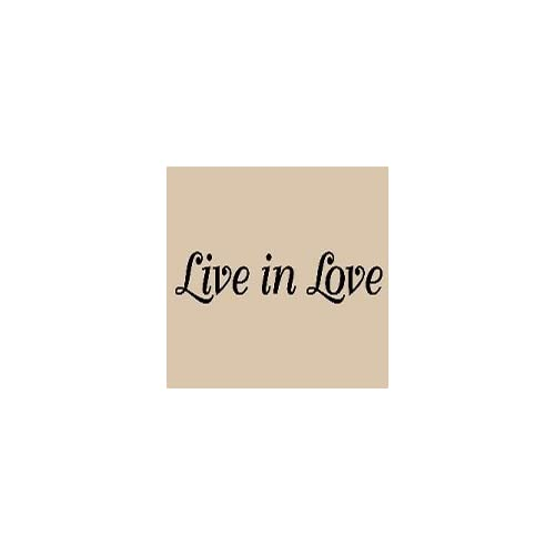 Black Live In Love Vinyl Wall Art