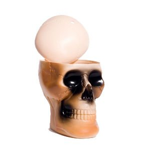 Plastic Skull Drinking Cup