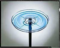 Cheap Water Dish for Birds (B005LRTK4O)
