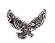 Eagle Pin #2