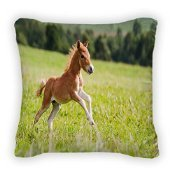new-mini-horse-falabella-throw-pillow-poplin-16x16