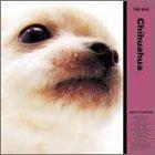 THE DOG チワワ 2005年度 カレンダー