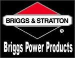 Briggs & Statton - Part# 189135GS - CAP-FUEL from Briggs & Statton Power Products