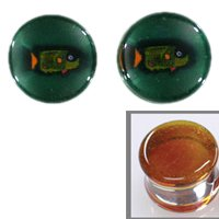 Parrot Fish Image on Amber Background Single Flare Handmade Glass Plugs - 3/4