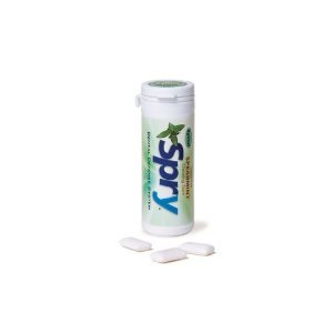 Spry Xylitol Gum Spearmint 6-pack 30-piece Tubes