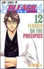 BLEACH (12) (ジャンプ・コミックス)
