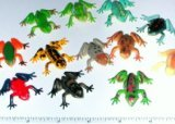 ~ 12 ~ Poison Dart Frogs ~ 1.5 Inch Plastic ~ NEW - 1