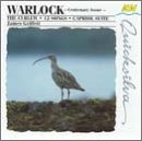 Curlew / 12 Songs