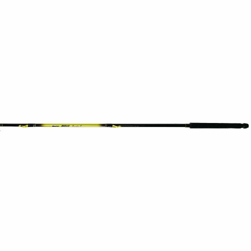 Master fishing tackle roddy telescopic crappie pole for Best collapsible fishing rod