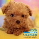プチわんカレンダー 2008 (2008)