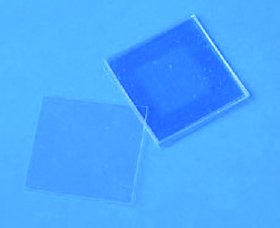 Cellatticetm Micro-Ruled Plastic Cell Culture Surfaces 75X25 Mm Slide, 50/Pk