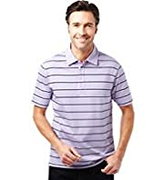 Pure Cotton Double Striped Polo Shirt with Stay New™