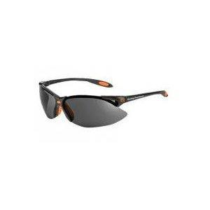 Harley-Davidson HD1201 Safety Glasses with Black Frame and TSR Gray Tint Hardcoat Lens