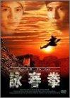 詠春拳 [DVD]