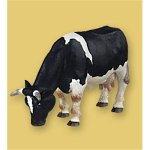 Papo - Black/White Grazing Cow